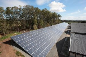 Part of the ground array at Ludlow which is Shropshire's biggest solar PV installation, courtesy of 7Energy!