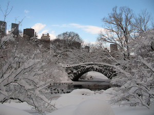A winter scene of a bridge in the snow